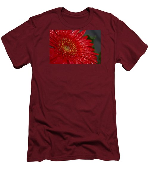 Red Gerber In The Rain Men's T-Shirt (Slim Fit) by Shelly Gunderson