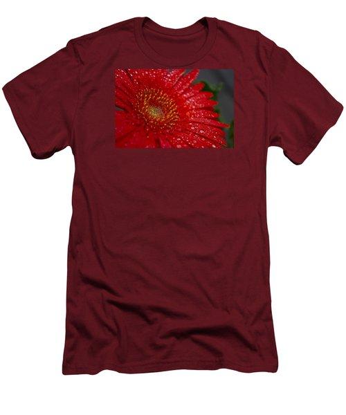 Red Gerber In The Rain Men's T-Shirt (Athletic Fit)