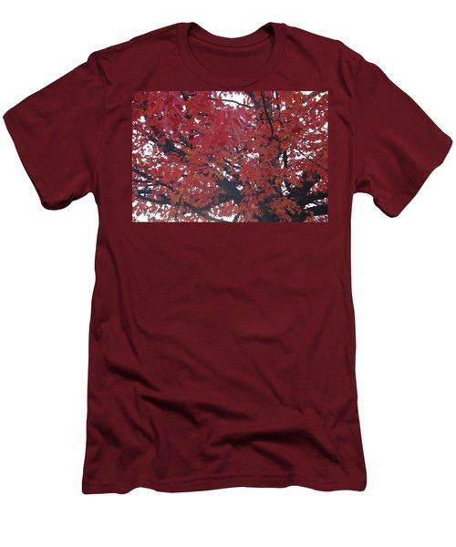 Crimson Leaves Men's T-Shirt (Athletic Fit)