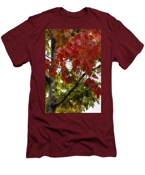 Men's T-Shirt (Slim Fit) featuring the photograph Red And Green Prior X-mas by Michael Frank Jr