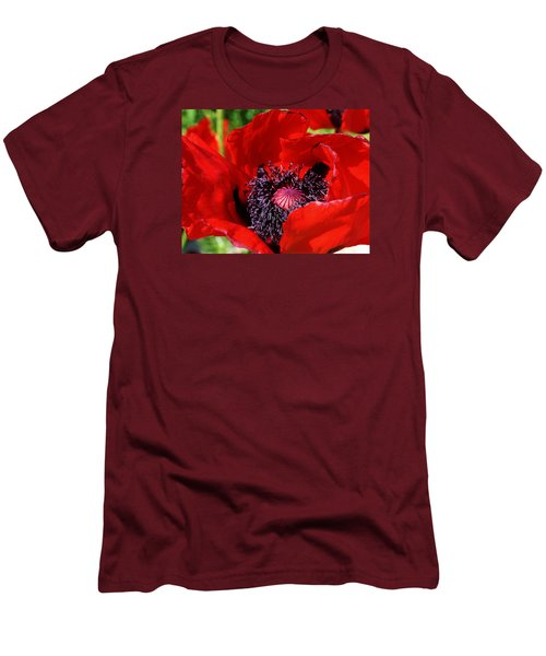 Red Poppy Close Up Men's T-Shirt (Athletic Fit)