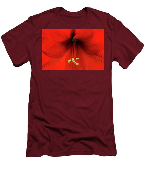 Amaryllis Men's T-Shirt (Slim Fit) by Denis Lemay
