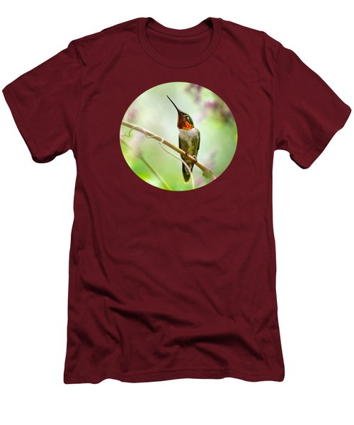 Hummingbird Looking For Love Men's T-Shirt (Slim Fit) by Christina Rollo