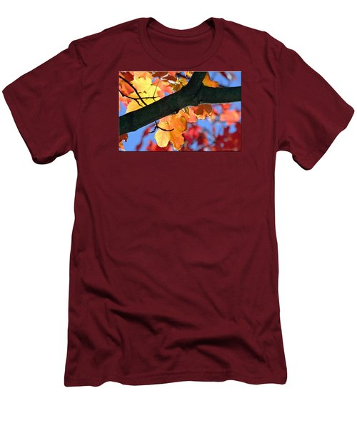 Changing Of The Colors Men's T-Shirt (Slim Fit) by Mikki Cucuzzo