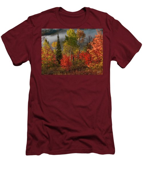 Color And Light Men's T-Shirt (Athletic Fit)