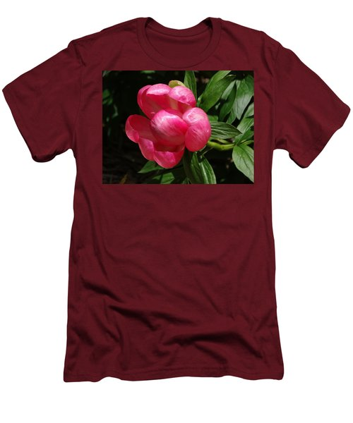 Emerging Peony Bloom Men's T-Shirt (Slim Fit) by Rebecca Overton