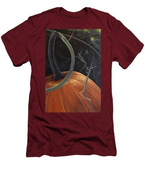 Enchantment Men's T-Shirt (Athletic Fit)