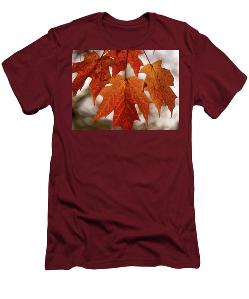 Fall Foliage Men's T-Shirt (Slim Fit) by Kimberly Mackowski