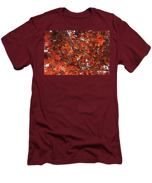 Men's T-Shirt (Athletic Fit) featuring the photograph Festive Japanese Maple by Michele Myers