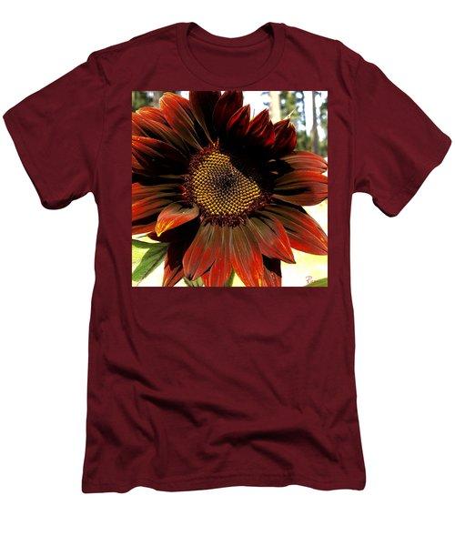 Fibonacci Hues Men's T-Shirt (Athletic Fit)