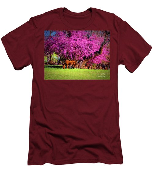 Grazing Horse  ... Men's T-Shirt (Athletic Fit)