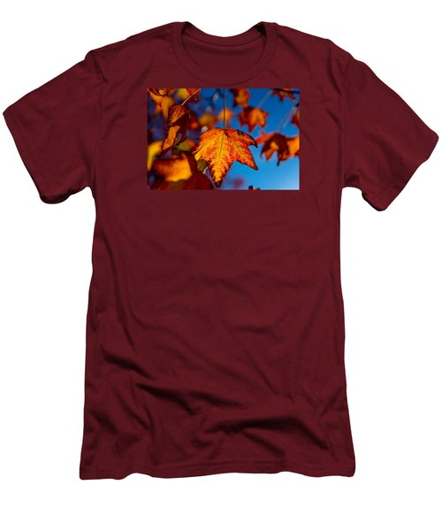 Hanging On Men's T-Shirt (Slim Fit) by Derek Dean