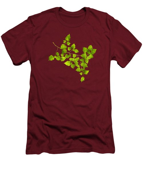Hawthorn Pressed Leaf Art Men's T-Shirt (Slim Fit) by Christina Rollo