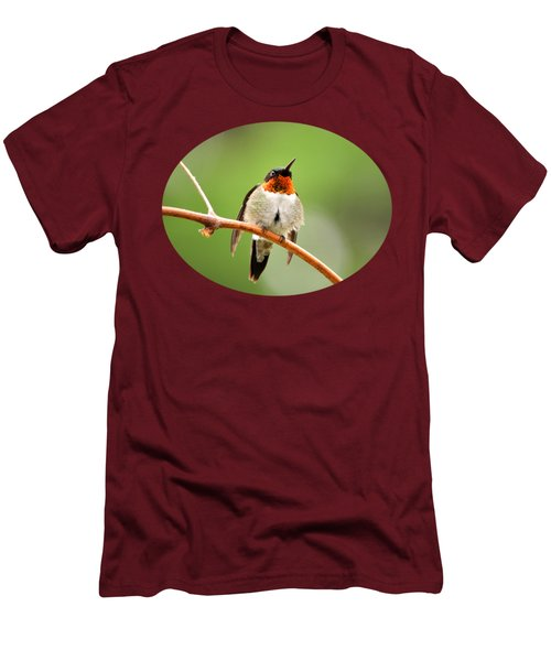 Male Ruby-throated Hummingbird Men's T-Shirt (Slim Fit) by Christina Rollo