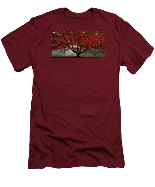 Men's T-Shirt (Slim Fit) featuring the photograph Morning Rays In The Forest by Ken Smith