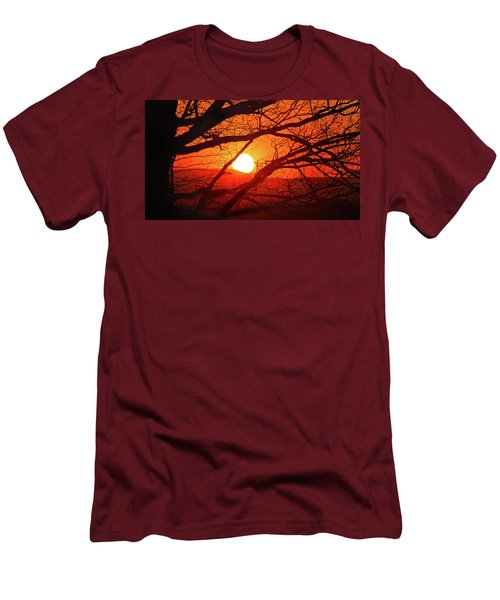 Naked Tree At Sunset, Smith Mountain Lake, Va. Men's T-Shirt (Athletic Fit)