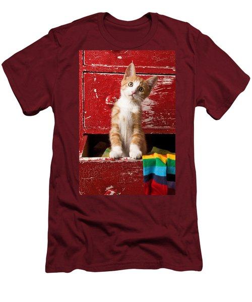Orange Tabby Kitten In Red Drawer  Men's T-Shirt (Slim Fit) by Garry Gay