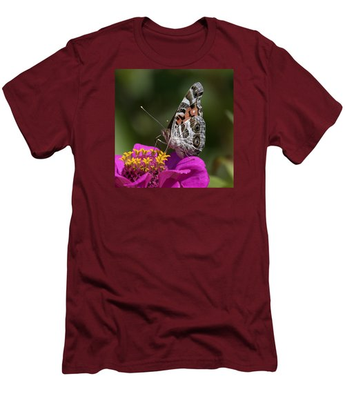 Painted Lady Men's T-Shirt (Slim Fit) by David Lester