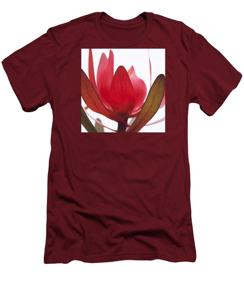 Petals Men's T-Shirt (Slim Fit) by Margaret Hormann Bfa