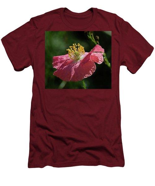 Poppy Close-up Men's T-Shirt (Athletic Fit)