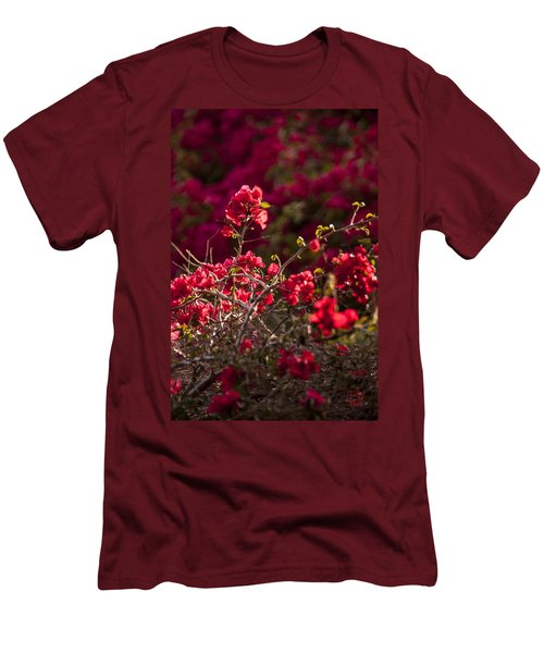 Men's T-Shirt (Slim Fit) featuring the photograph Red Flowering Quince Schrub by Daniel Hebard