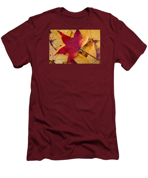 Red Leaf Men's T-Shirt (Slim Fit) by Chevy Fleet