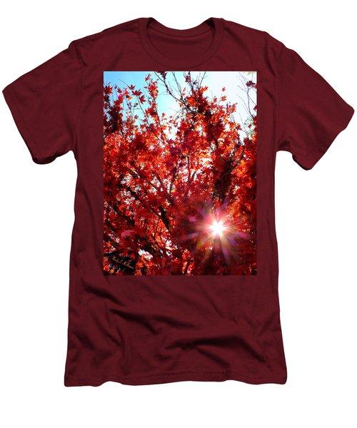 Red Maple Burst Men's T-Shirt (Athletic Fit)