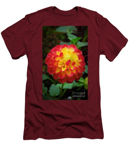 Red Tipped Petals Men's T-Shirt (Athletic Fit)