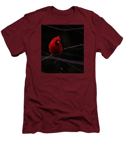 Men's T-Shirt (Slim Fit) featuring the photograph Scene Stealer  by John Harding