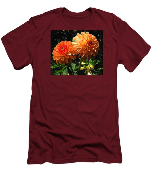 Splendor Of Fall Dahlias  Men's T-Shirt (Athletic Fit)