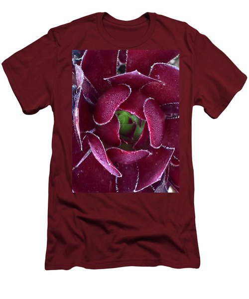 Succulent Mystery Men's T-Shirt (Slim Fit) by Russell Keating