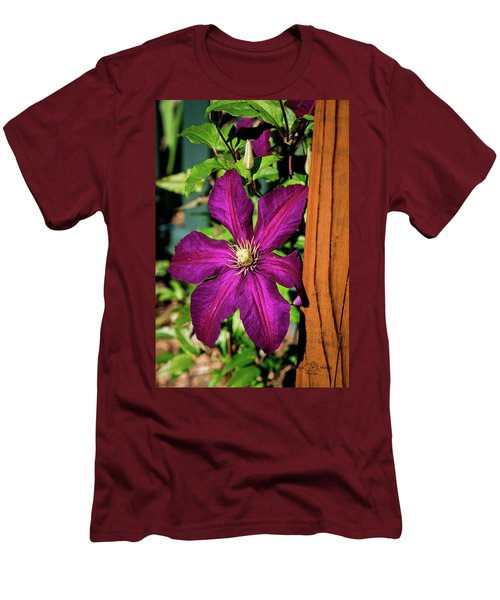 The Garden Wall Men's T-Shirt (Athletic Fit)