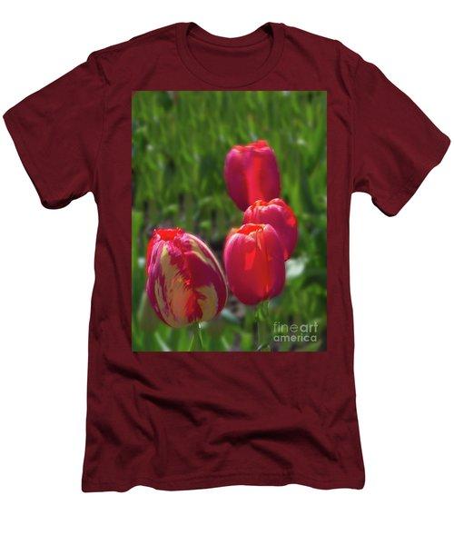 Tulip Quad Aglow Men's T-Shirt (Athletic Fit)