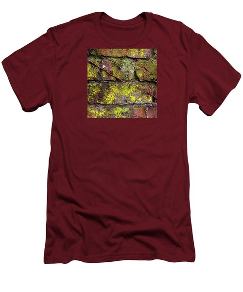 Wall Men's T-Shirt (Slim Fit) by Anne Kotan