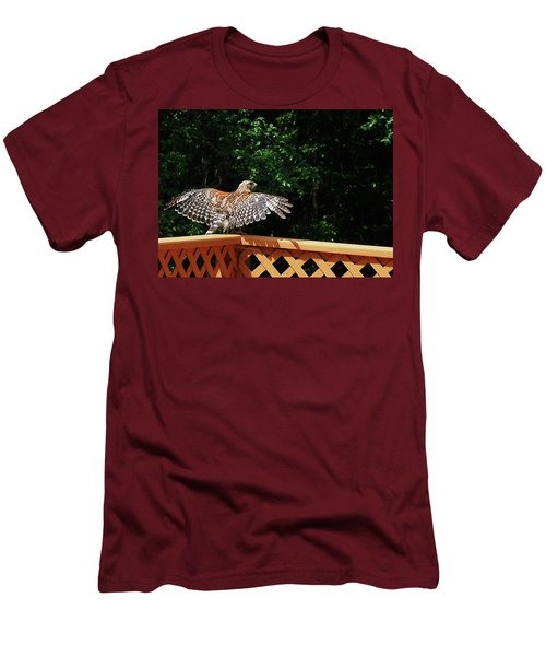 Wingspan Of Hawk Men's T-Shirt (Athletic Fit)