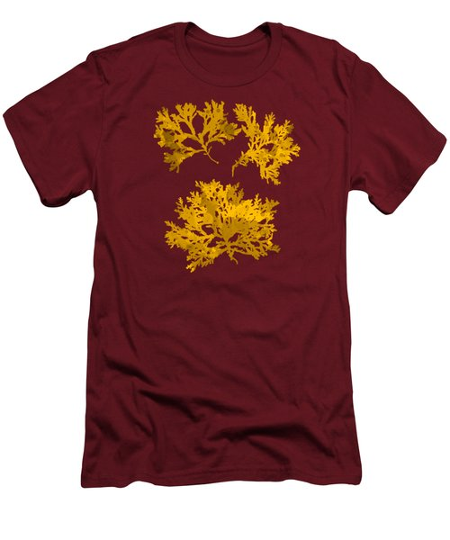 Men's T-Shirt (Slim Fit) featuring the mixed media Yellow Gold Seaweed Art Delesseria Alata by Christina Rollo