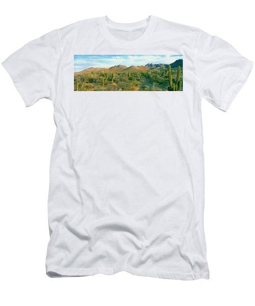 Cardon Cactus Pachycereus Pringlei Men's T-Shirt (Athletic Fit)
