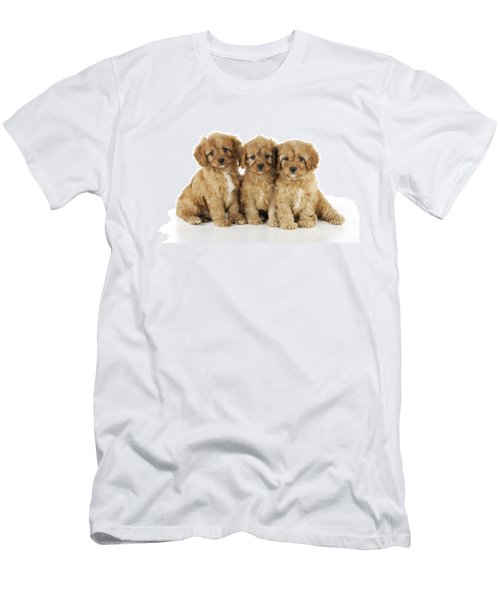 Cockapoo Puppy Dogs Men's T-Shirt (Athletic Fit)