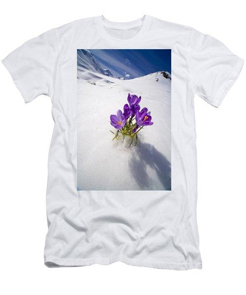 Crocus Flower Peeking Up Through The Men's T-Shirt (Athletic Fit)