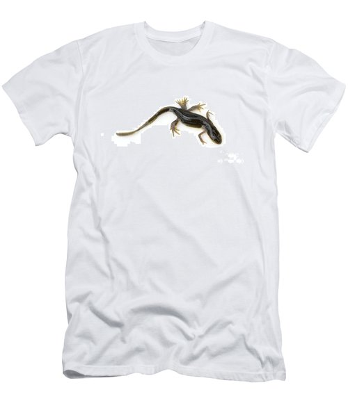 Mutated Eastern Newt Men's T-Shirt (Athletic Fit)