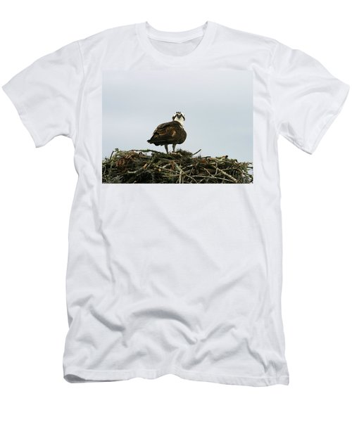 Osprey Nesting Men's T-Shirt (Athletic Fit)