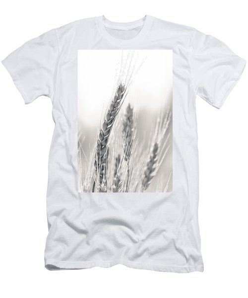 Wheat Men's T-Shirt (Athletic Fit)