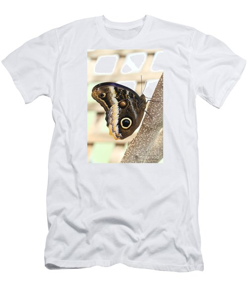 Yellow-edged Giant Owl Butterfly #4 Men's T-Shirt (Slim Fit) by Judy Whitton