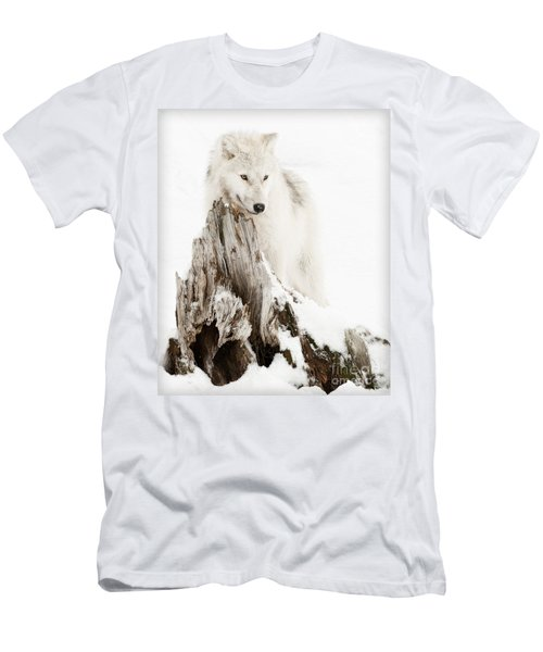 Arctic Wolf Pup Men's T-Shirt (Athletic Fit)