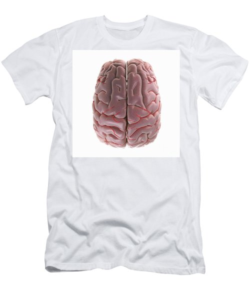 Brain With Blood Supply Men's T-Shirt (Athletic Fit)
