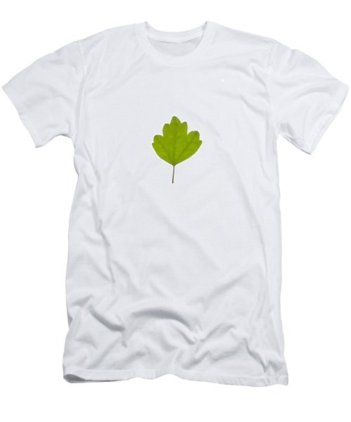 Leaf Men's T-Shirt (Athletic Fit)