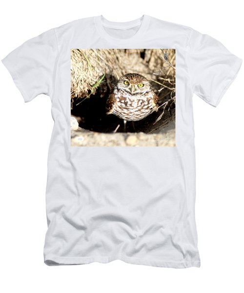 Owl Men's T-Shirt (Athletic Fit)