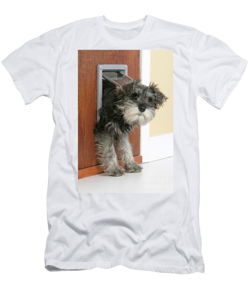 Schnauzer Puppy Dog Men's T-Shirt (Athletic Fit)