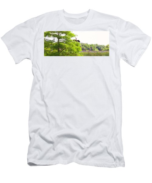 Anhinga Anhinga Anhinga On A Tree Men's T-Shirt (Athletic Fit)