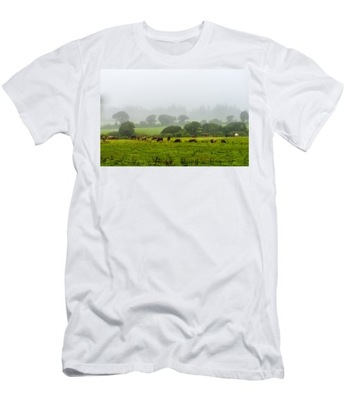 Cows At Rest Men's T-Shirt (Athletic Fit)